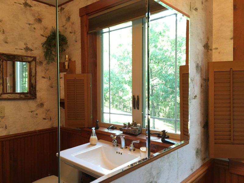 ADK decorados banho em madeira natural, paredes de design de bétula e muita luz e ventilação
