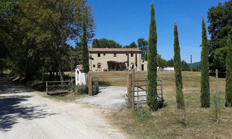Casale S.Maria - discover Tuscany, alquiler vacacional en Bivio Montorgiali