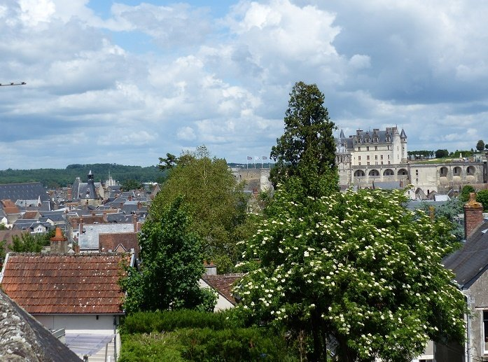 Vaste maison (9 pers) vue splendide, centre ville calme, jardin, parking, garage, vacation rental in Amboise