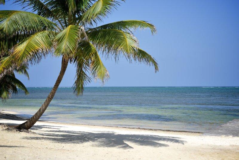 παραλία μας
