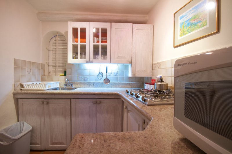 lower studio Kitchen equipped and furnished with granite tops.gas job micro wave oven
