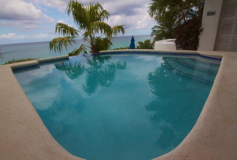 Sfioro di acqua salata piscina a tuffo e oceano