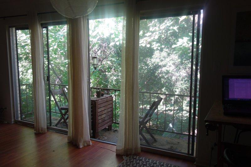 balcony overlooking Barton Creek (3rd floor)