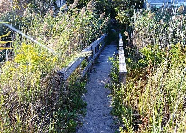 Privat promenadväg till Cape Hedge Beach; från stranden.