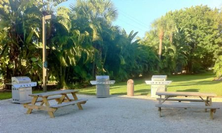 Shady, Gulf Side BBQ and Picnic Area