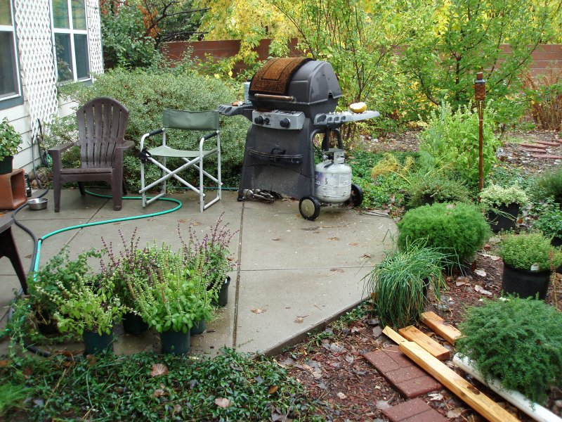 View of back patio with gas grill that guests are welcome to use.