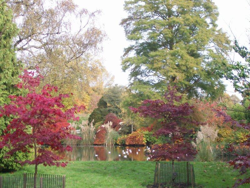 Wakehurst Place, com cores surpreendentes durante todo o ano.