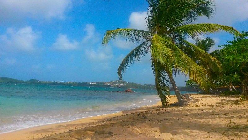 Appartement Bougainvilliers vue sur mer, vacation rental in Tartane
