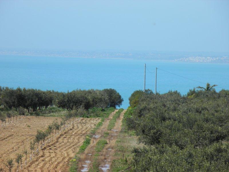 Casa Ragana un'oasi di pace a 5 minuti dal mare, vacation rental in Maragani
