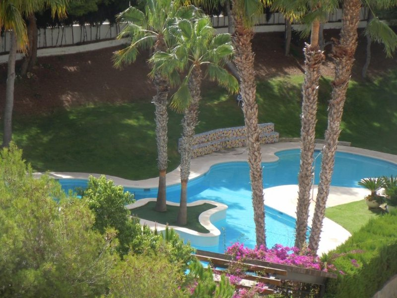 5th Floor Apt / Pool / A/C / Wi-Fi / Lift Access - #5B / Campoamor Beach, vacation rental in Mil Palmeras