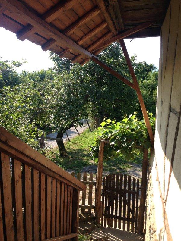 Depuis le balcon, devant la porte. Un endroit idéal pour boire votre thé du matin.