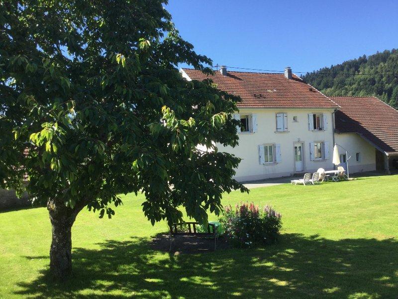 Gîte Leonline,  bien agréable, dans une rue calme., holiday rental in Dannemarie