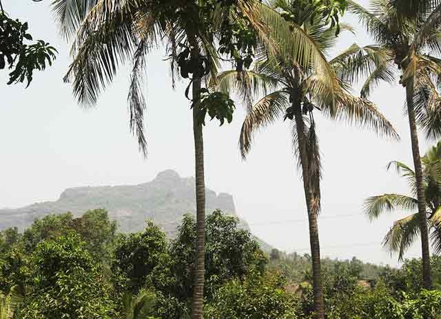 Nivant Agro Experience, vacation rental in Palghar