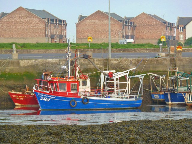 Boats moored at Annagassan harbour