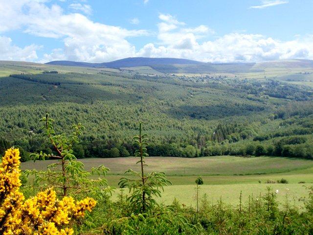 Vale of Avoca