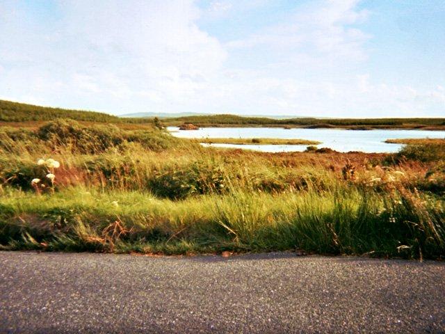 View near property