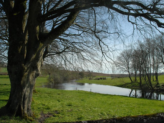 Killeshandra river scene