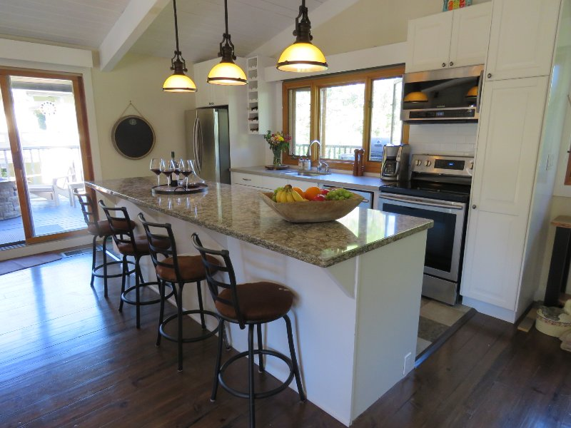 Bright, newly renovated open concept kitchen with cathedral ceilings.