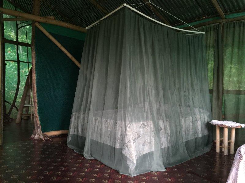 Isla Violin Eco-Lodge, location de vacances à Drake Bay