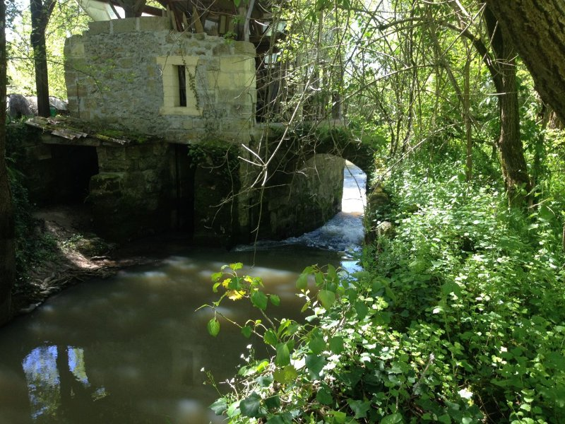 Restored Moulin Gite with spacious grounds, holiday rental in Belves-De-Castillon