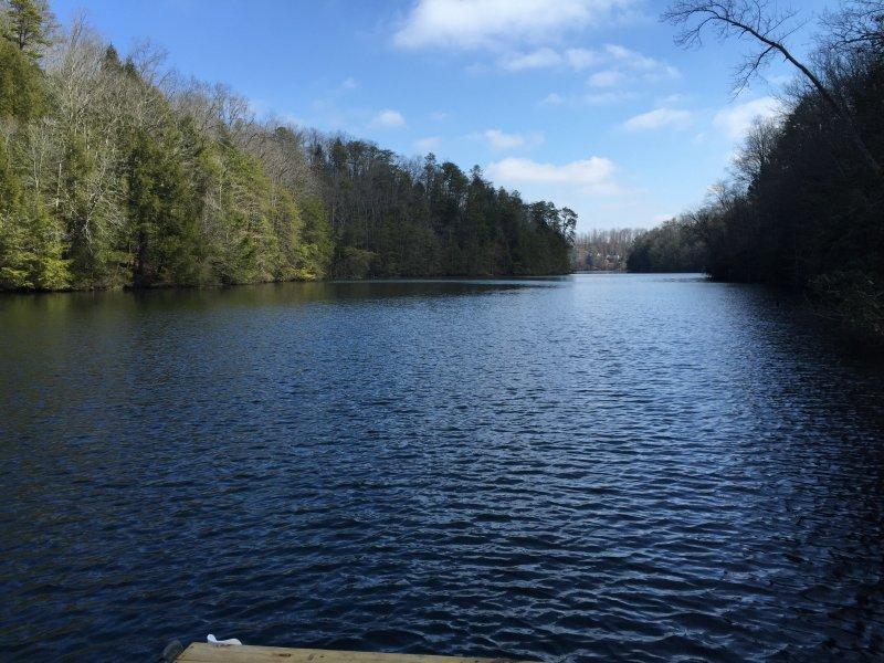 Waar Wood Creek Lake - varen en vissen