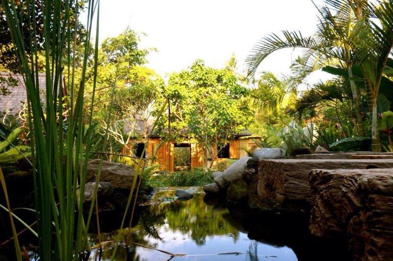 Molti ospiti dicono che questo è il più bel giardino che abbiano mai visto, ma essere il giudice.