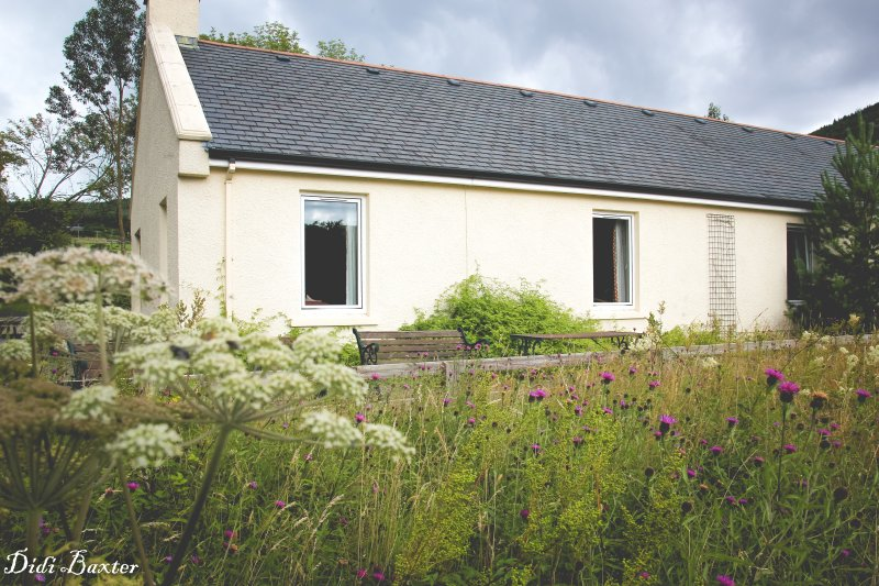 Shush, can you hear that? The sound of the country, casa vacanza a Mayobridge