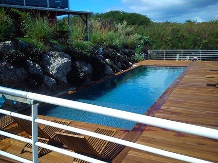 THE vegetated pool ...