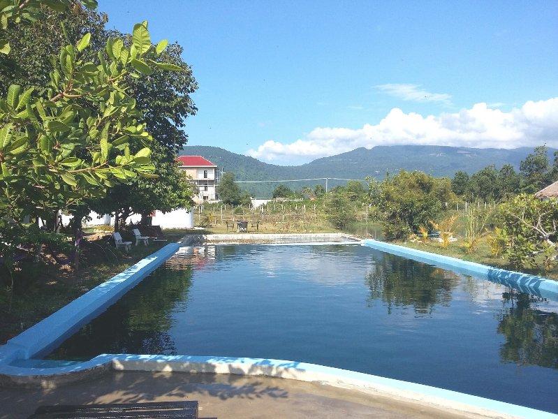 18m piscine naturelle