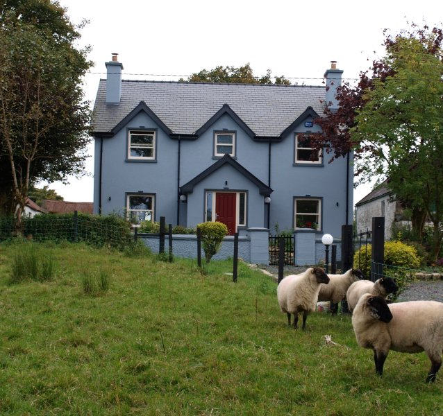 Ardvarney Country Lodge, the sheep are looking out for you.