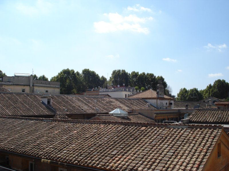 a room with a view - romantic roofs