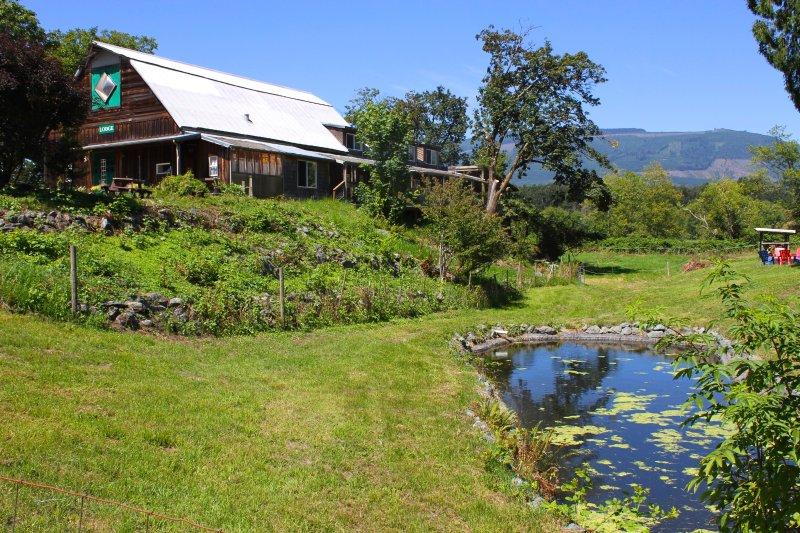 Lodge at Cedar Springs, vacation rental in Burlington