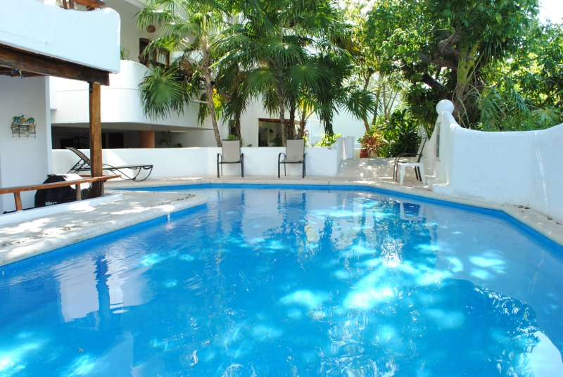 Refurbished Pool area, perfect place to relax