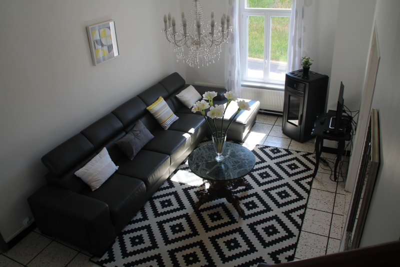 the living room with his pellet stove