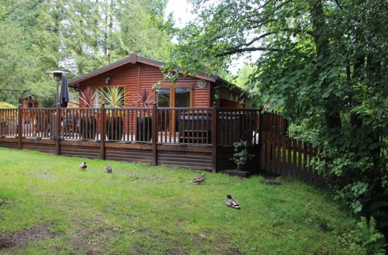 Footprints Lodge, White Cross Bay - idyllic woodland setting in the heart of the English Lakes