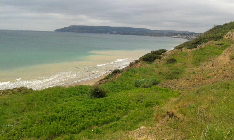 Une vue du chemin de la plage juste à l'extérieur du site en regardant vers Sandown et Shanklin.