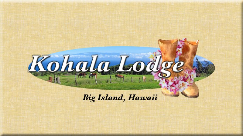 Step back in time and experience Old Hawaii. View the chain of Islands,  Ocean & Sunsets...
