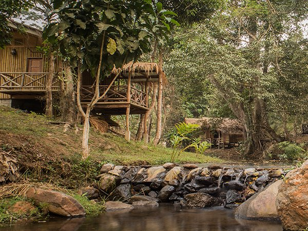 DreamCaught Treehouses Villa, holiday rental in Chiang Dao