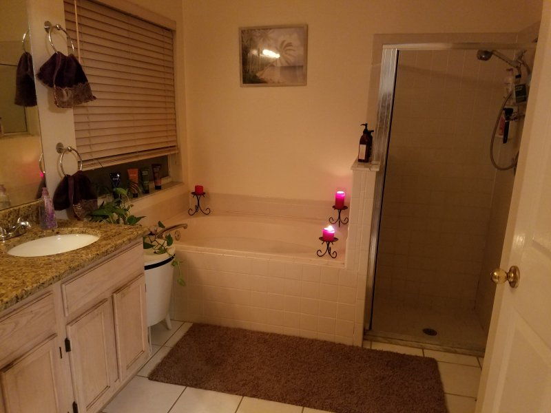 Master Bathroom retreat with separate tub, shower, toilet and dual sinks
