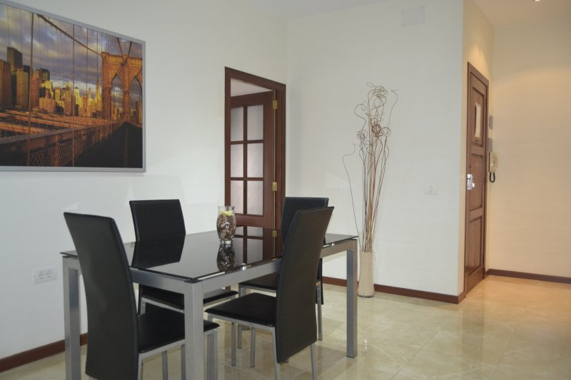 Urban Flat, vacation rental in Santa Cruz de Tenerife