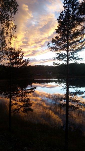 Bjørkeskogen, location de vacances à Froland Verk