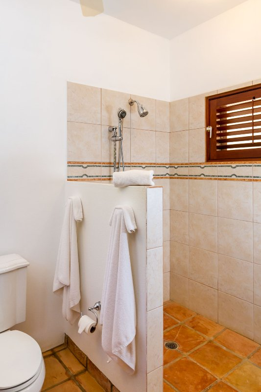 The Garden Master Suite indoor shower