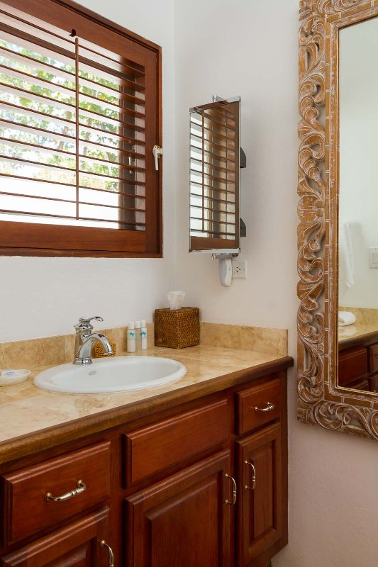 Coconut Palm Villa's Guest Suite bathroom