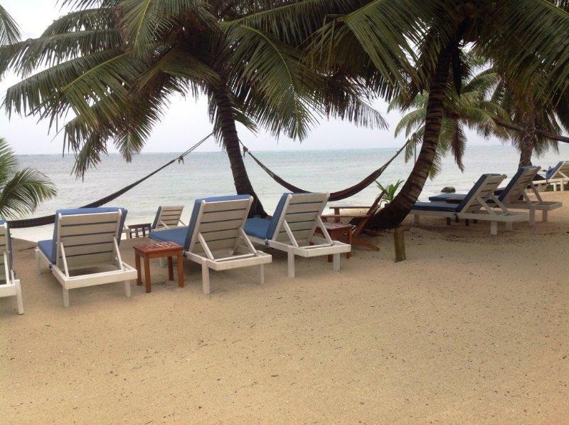 Un montón de salones junto a la playa y hamacas. Toma una bebida fría y un libro y disfruta de la brisa fresca.