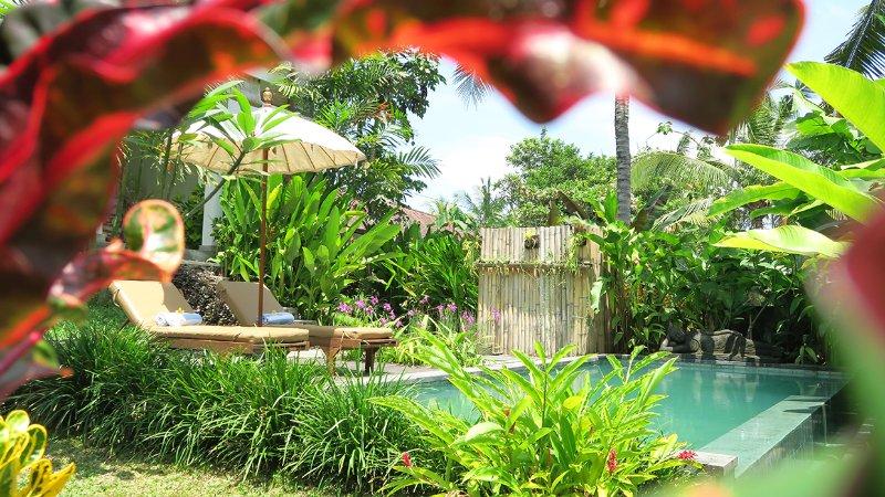jardin privé et la piscine Luscious