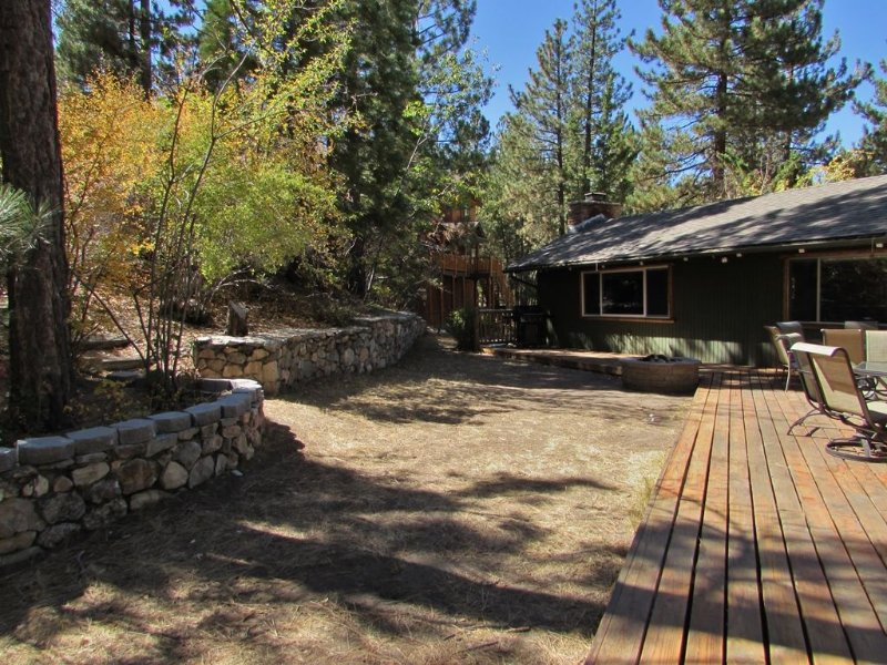 Large Back Yard - Natural Gas BBQ and Fire Pit