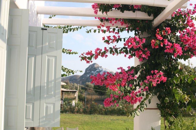 La vista de Skyros (Chorio) a partir de nuestras propiedades