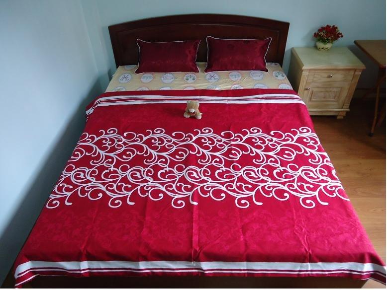 Sala 2: Cosy, vuoto, lenzuola e cuscini sono nuovi, di buona qualità
