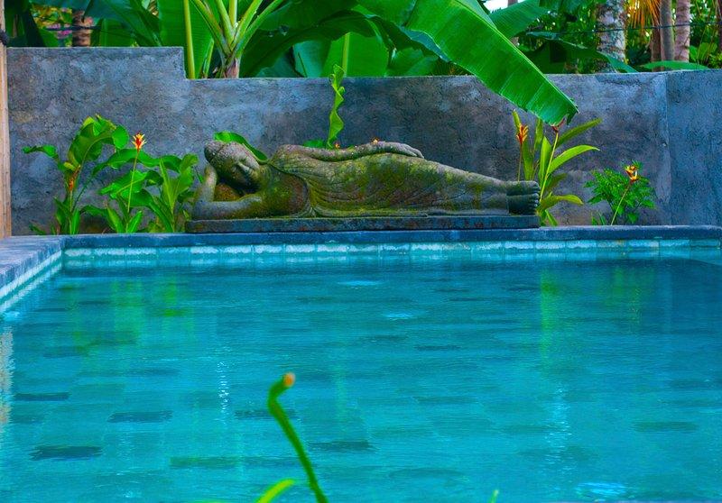 Une piscine privée pour la journée ou de la nuit.
