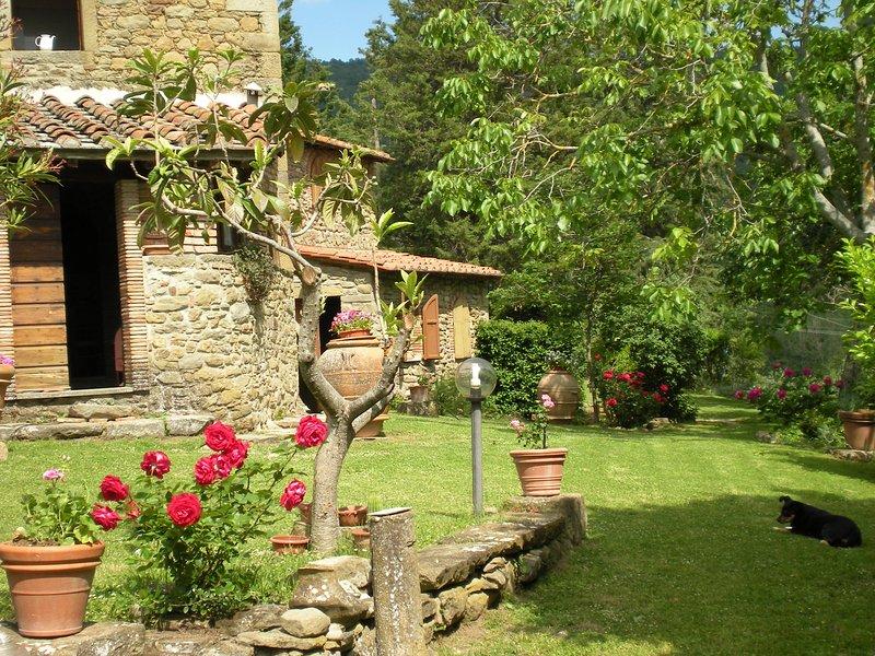 Villa Cortona, holiday rental in Pierle